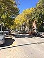 Milwaukee's lower east side in fall.jpg