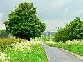 Mires Lane - geograph.org.uk - 173251.jpg