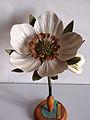 Modell von Fragaria vesca (Walderdbeere) -Brendel Nr. 35-.jpg