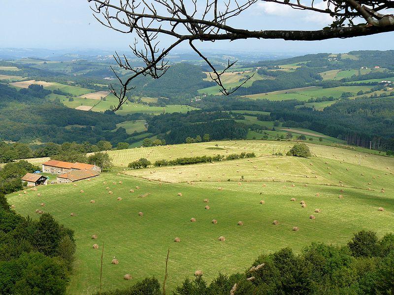 File:MontagneBourbonnaise 2007.JPG