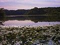 Morrison Rockwood State Park.jpg
