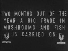 پرونده:Moscow clad in snow - Moscou sur la neige - Москва в снежном убранстве - Москва в снегу (1908), noaudio.ogv