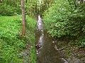 Motolský potok, pod vozovnou, po proudu.jpg