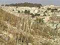 Mt Zion Drimia 613.jpg