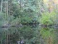 Mullica River 4.jpg