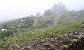 Munnar - views from Munnar (21).jpg