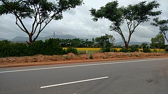 National Highway 766 (India) - NH 766 view from Gundalpet to Wayanad