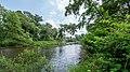 NSG Rurauenwald-Indemuendung FFH-Gebiet Indemündung Ruraue Naehe Indemündung II.jpg