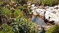 Nascente rio s francisco pnsc.jpg