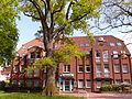 Naturdenkmal 3-2, Eiche vor dem neuen Rathaus, Bild 1.JPG