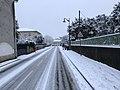 Neige à Saint-Maurice-de-Beynost (Ain, France) - décembre 2017 - 9.JPG