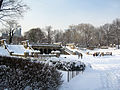New York. Central Park. Snowy (2797205359).jpg