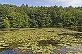 Niederlausitz 08-13 img24 Naturpark Schlaubetal.jpg