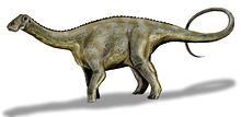 Drawing of Nigersaurus