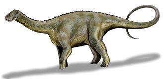 Diplodocoidea - Image: Nigersaurus BW