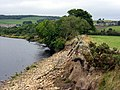 North Tyne near Fourstones - geograph.org.uk - 74001.jpg