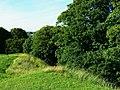 North across the edge of the Roman amphitheatre, Cirencester - geograph.org.uk - 1931239.jpg