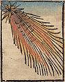Nuremberg Chronicle f 229r 3.jpg