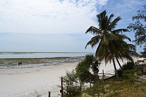 Nyali Beach towards the south from the Reef Hotel during low tide in Mombasa, Kenya 3.jpg