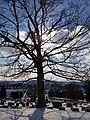 Oak Grove Cemetery (31837017990).jpg