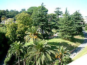 The private Vatican Gardens, notably lacking marijuana.