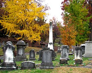 Old Gray Cemetery - The southwest section of Old Gray in Autumn