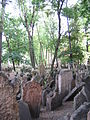 Old Jewish Cemetery, Prague 059.jpg