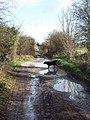 Old Shaston Drove - geograph.org.uk - 308418.jpg
