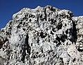 Olsztyn zamek skała wapienna 2010 p-CN.jpg