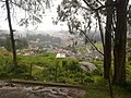 Ooty from the Tea Factory - panoramio.jpg