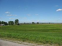 Open fields in Kaskaskia Precinct.jpg