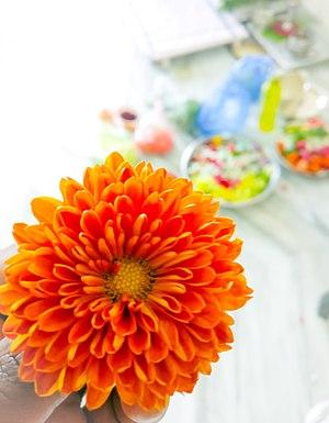 Dahlia - Orange Dahlia