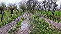 Ortweg. Reader-06.jpg