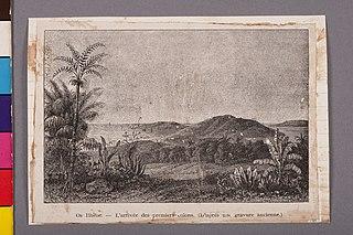Os Ilhéos - L'Arrivée des Premiers Colons (L'Arprés Une Gravure Ancienne.)