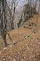 Ostaci srednjovekovnog grada na Borackom krsu (2).jpg