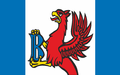 POL gmina Brusy flag.png