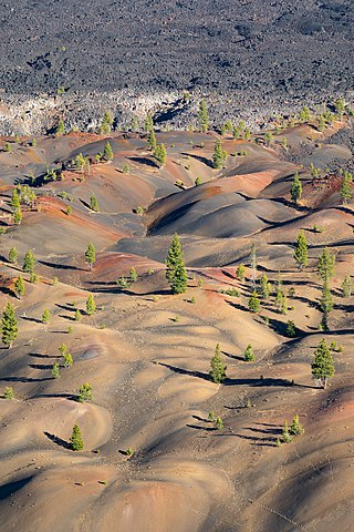 Painted Dunes and Fantastic Lava Beds as seen from the edge of Cinder Cone's crater.