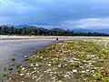 Pakke river Arunachal Pradesh IMG 20170424 165112 HDR.jpg