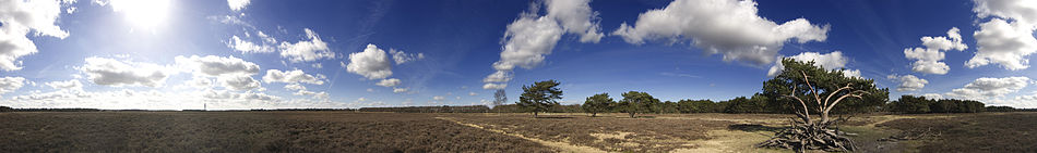 360 degree view of a heath near Bussum