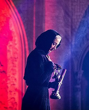 Pantea Panahiha - Pantea Panahiha in 17th Iranian cinema celebration
