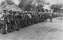 Paraguayan troops lined up in a jungle