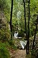 Parco fluviale torrente Centa.jpg