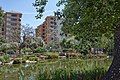 Parque Geologo Jose Royo - Castellon - Lago 2.jpg