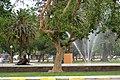 Parque de Mayo (11427015494).jpg