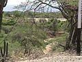 Parque nacional Cerro Saroche 1999 003.jpg