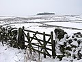 Pastures and moorland east of Park Gates Farm - geograph.org.uk - 649932.jpg