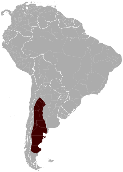 Geographical distribution of the Patagonian Mara Dolichotis patagonum.