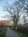 Pathway, Ribnitz-Damgarten ( 1070904).jpg