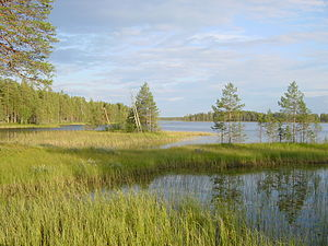 North Karelia - Image: Patvinsuo Suomunjärvi 1