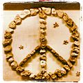 Peace Nackrosen.jpg